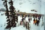 Skiingi n Whistler, Canada.