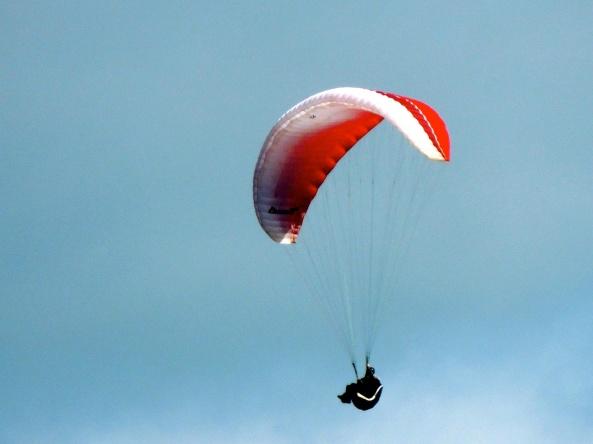 A lone hang glider in Polperro.