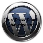 word-press-2013